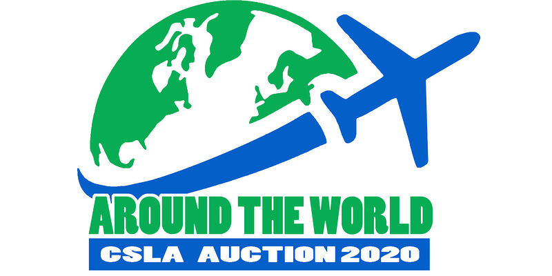 AUCTION LOGO V2 copy 3