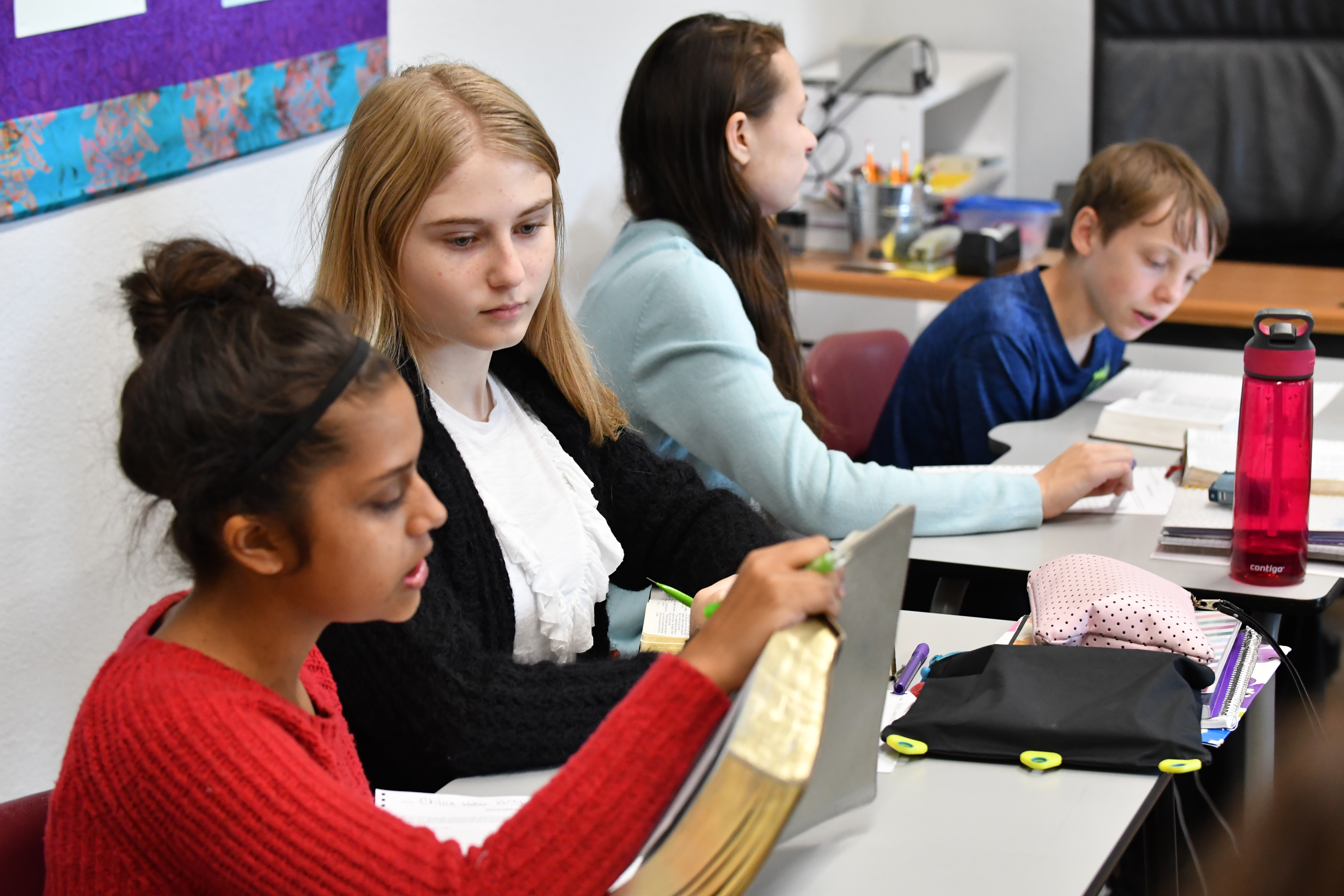 Responsible students collaborating, working together
